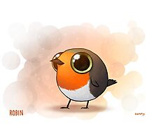 Cute Fat Robin Photographic Print