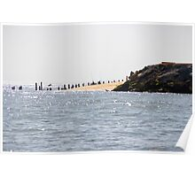 At the edge of the Peninsula - Bay of Arcachon, France. Poster