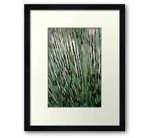 Jungle - Abstract Framed Print