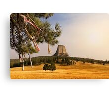 Prayer Cloths on the Trees at Devils Tower National Monument Canvas Print
