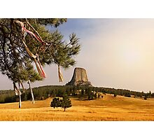 Prayer Cloths on the Trees at Devils Tower National Monument Photographic Print