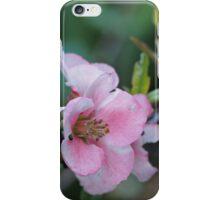 Spring Tide iPhone Case/Skin
