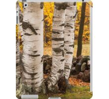 Fall Birch iPad Case/Skin