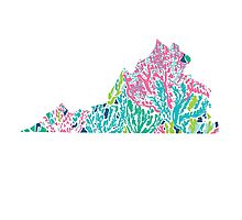 Virginia Lilly Pulitzer Coral Photographic Print
