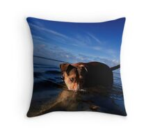 Paws playing Jaws Throw Pillow
