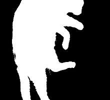 Ninja Cat by maxkraken