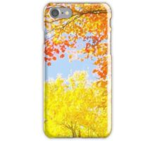 Autumn's Vibrancy iPhone Case/Skin