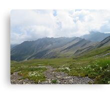 Beautiful nature mountains flowers Canvas Print