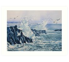 Sea, Splashes and Gulls Art Print