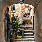 Stairway with Potted Flowers -- Orvieto, Italy by T.J. Martin