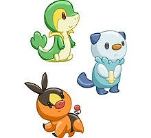 Pokemon Starters - Gen 5 Photographic Print