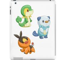 Pokemon Starters - Gen 5 iPad Case/Skin