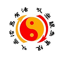 Jeet Kune Do Asian Yin Yang Symbol Photographic Print