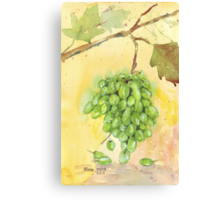 Picture a Vineyard Canvas Print