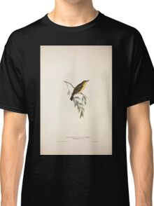 John Gould The Birds of Europe 1837 V1 V5 132 Melodious Willow Wren Classic T-Shirt