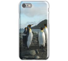 King Penguins, Macquarie Island landscape iPhone Case/Skin