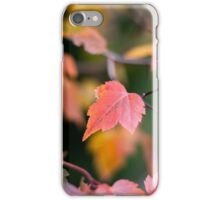 Autumn Red iPhone Case/Skin
