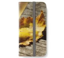 Fall on Fire iPhone Wallet/Case/Skin