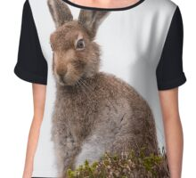 Mountain Hare Chiffon Top