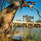 Robinvale Bridge by Werner Padarin