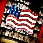 USA-FLAG-3809 by Paul Foley
