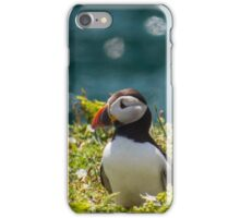 Puffin! iPhone Case/Skin