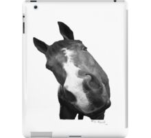 Many Sides of the Equine iPad Case/Skin