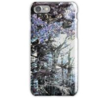A Fall Sunset Digitized Into A Winter Morning iPhone Case/Skin