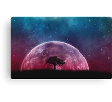 Nightime moon Canvas Print