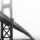 Mist by Radek Hofman
