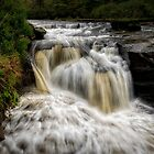 Pots Of Gartness In Killearn, Scotland by Jeremy Lavender Photography