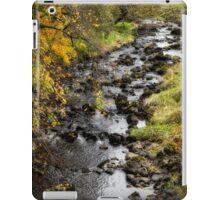 Autumn Colours in Scotland iPad Case/Skin