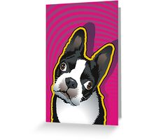 quizzical Bailey Greeting Card
