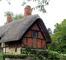 Anne Hathaway's Cottage by Margaret Stevens