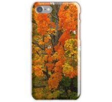 Orange & Yellow Tree iPhone Case/Skin