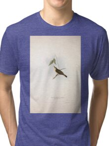 John Gould The Birds of Europe 1837 V1 V5 133 Yellow Willow Wren Tri-blend T-Shirt