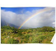 Rainbow in Hawaii Poster