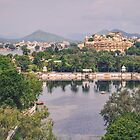 Udaipur - The Venice of the East by TonyCrehan