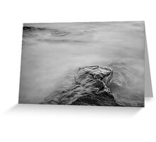 Allens Pond XII BW Greeting Card