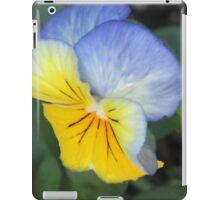 blue and yellow pansie iPad Case/Skin