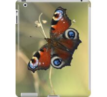 Peacock butterfly on a dried flower iPad Case/Skin