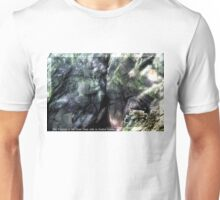 The Province of the Great Deep calls to Avalina Kreska Unisex T-Shirt