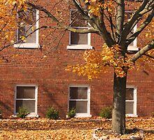 Leaf by Leaf by Mikayla Perecich