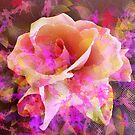 Rose Abstract by Dana Roper