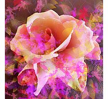 Rose Abstract Photographic Print