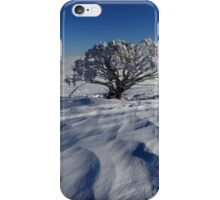 Endurance.  Mt Stirling  iPhone Case/Skin