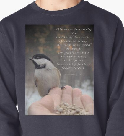 """""""Intently Observe"""" Pullover"""