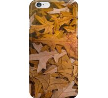 Floating Chaos - Fallen Oak Leaves in the Fountain iPhone Case/Skin
