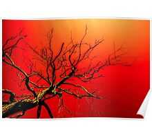 Red Branches of Crimson Dreams Poster
