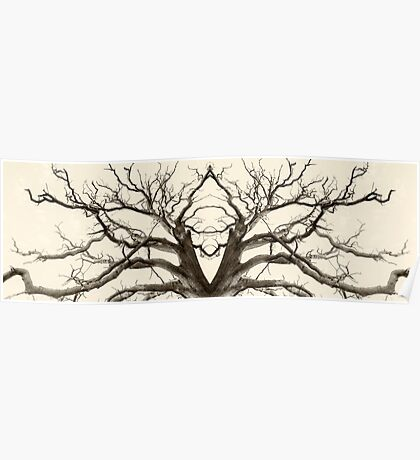 Tree Abstract in Brown Poster